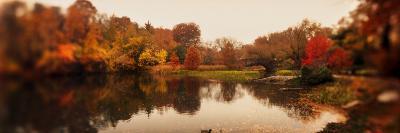 Pond in a Park, Central Park, Manhattan, New York City, New York State, USA