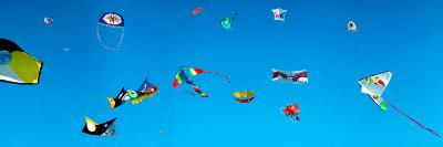 Low Angle View of Kites Flying, Bouches-Du-Rhone, France