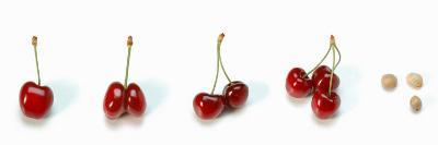 Photo Collection of Cherries