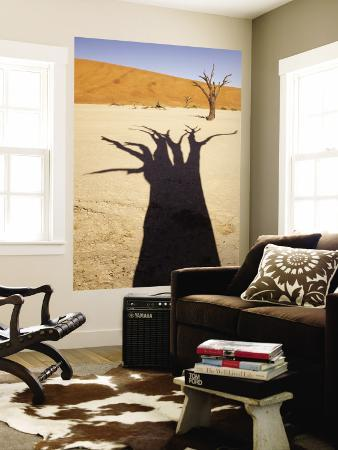 Dead Tree Casts Shadow on Dry Lakebed, , Sossusvlei, Namibia, Africa