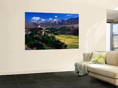 Village, Barley Fields and Ladakh Ranges, Ladakh