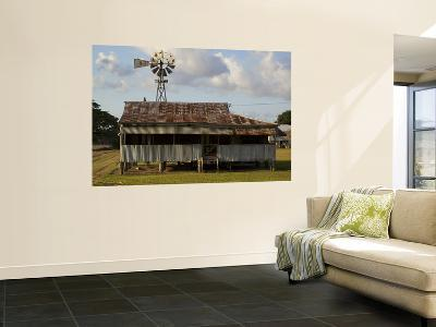 Old Farmhouse with Windmill in Sugar Farming Heartland, Cordelia