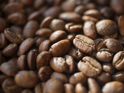 Colombia, Caldas, Manizales, Colombian Coffee Beans