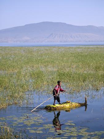 Ethiopia, Lake Awassa; a Young Boy Punts a Traditional Reed Tankwa Through the Reeds
