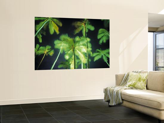 Palm Trees Fiji Pacific Islands Wall Mural By Peter Adams At - Palm-tree-furniture-from-pacific-green