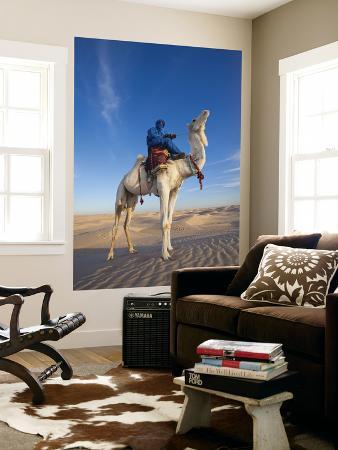 Tunisia, Sahara Desert, Douz, Great Dune, Rider and Camel