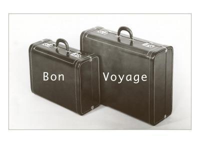 Suitcases, Bon Voyage