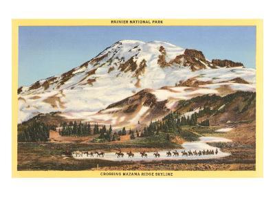 Mt. Rainier, Mazama Ridge, Washington