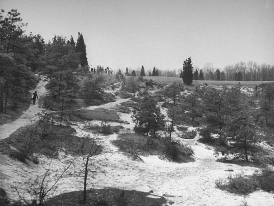 'Typical Terrain on Pine Valley Golf Course, Where Masters ...