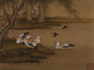 Ducks and Swallows. from an Album of Bird Paintings