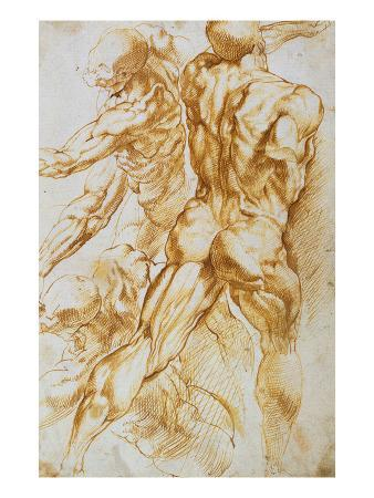 Anatomical Studies: Nudes in Combat