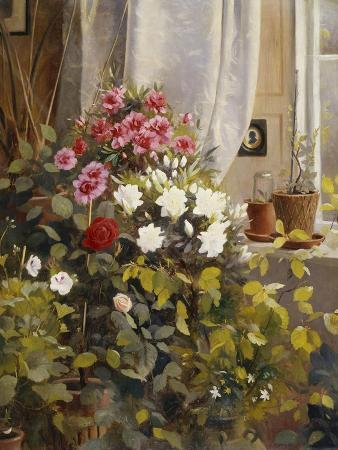 Azaleas, Geraniums, Roses and Other Potted Plants by a Window