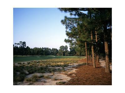 Pinehurst Golf Course No. 2, Hole 12