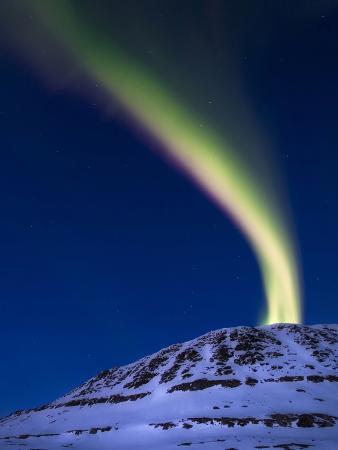 An Aurora Borealis Shooting Up from Toviktinden Mountain, Norway