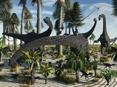 A Herd of Diplodocus Dinosaurs Feeding on Plants