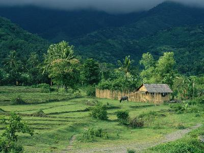 A Farm and Home in the Mountains of Panay Island