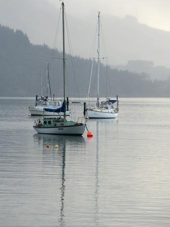 Sailboats Moored in Carey's Bay