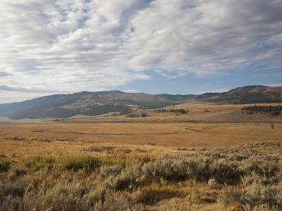 Hills and Vast Grasslands under a Cloud-Filled Sky in the Lamar Valley