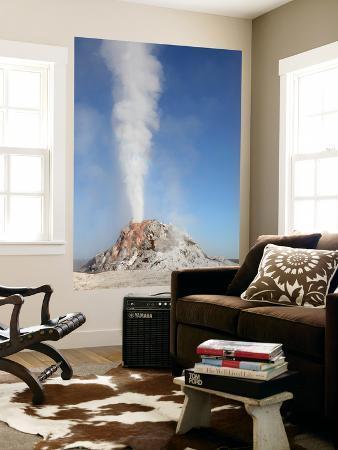 White Dome Geyser Erupting, Upper Geyser Basin Geothermal Area, Yellowstone National Park