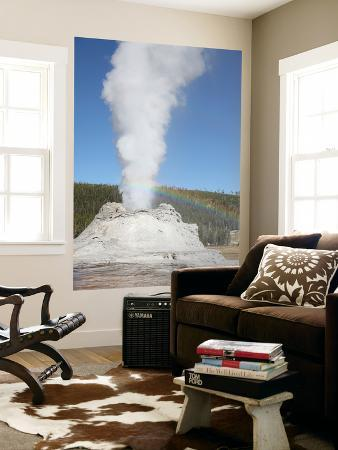 Castle Geyser Eruption, Upper Geyser Basin Geothermal Area, Yellowstone National Park, Wyoming