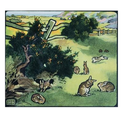 Illustration of Rabbits in a Field by Edwin Noble