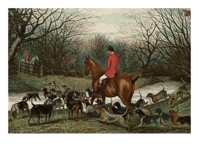 Men on Hunting Trip Using Dogs