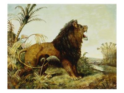A Lion in a Jungle Landscape