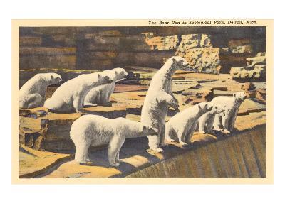 Polar Bears in Zoo, Detroit, Michigan
