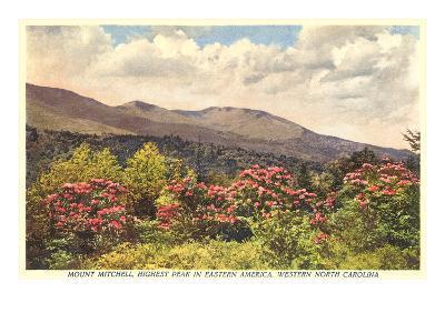 Mt. Mitchell, Western North Carolina