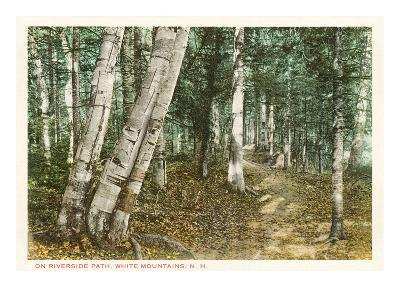 Riverside Path, White Mountains, New Hampshire