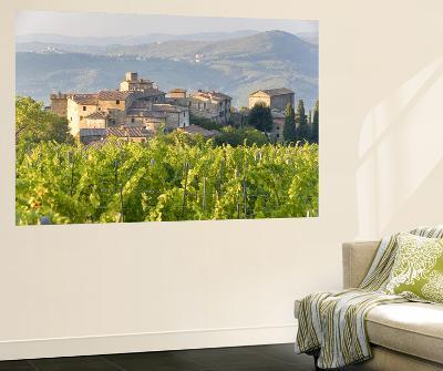 Vineyard and Village, Volpaia, Tuscany, Italy