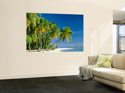 Palm Trees and Tropical Beach, Maldive Islands, Indian Ocean