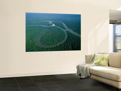 Amazon River, Amazon Jungle, Aerial View, Brazil