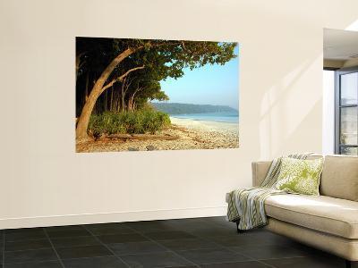Radhanagar Beach.