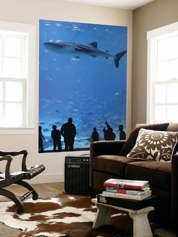 Large Whale Shark Swimming In Tank With People Below At Georgia Aquarium Prints By Frank Carter At Allposters Com