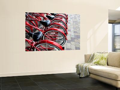 Red Bicycles for Hire