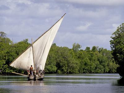 Dhow Sailing in Mangrove Channel, Lamu, Kenya
