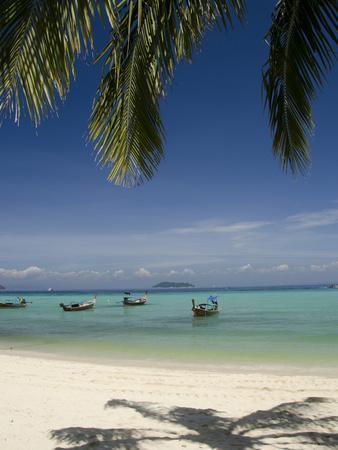 Thai Longboats Along the Coast of Phi Phi Don Island, Phuket, Andaman Sea, Thailand