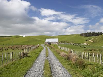 Track and Farm Building, Near Lake Ferry, Wairarapa, North Island, New Zealand