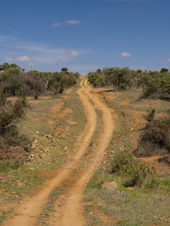 Loisaba Wilderness Conservancy, Laikipia, Kenya, East Africa, Africa.