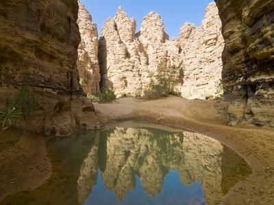 Little Pool in the Essendilene Gorge, Near Djanet, Southern Algeria, North Africa, Africa