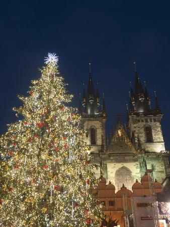 Gothic Tyn Church, Christmas Tree at Twilight in Old Town Square, Stare Mesto, Prague