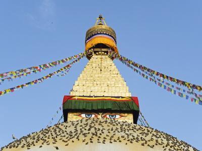 Pigeons And Prayer Flags On Boudha Stupa Chorten Chempo