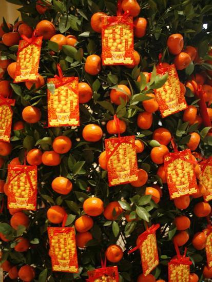 Tangerine Good Luck Symbols Chinese New Year Decoration