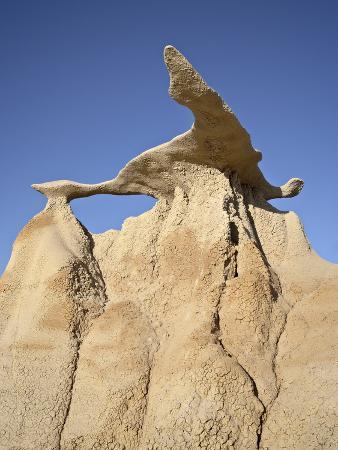 Bisti Wing, Bisti Wilderness, New Mexico, United States of America, North America