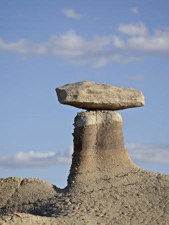 Hoodoo, Bisti Wilderness, New Mexico, United States of America, North America