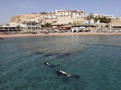 Scuba Divers Enjoy the Clear Red Sea Waters at Sharks Bay, Sharm El-Sheikh, Sinai South, Egypt