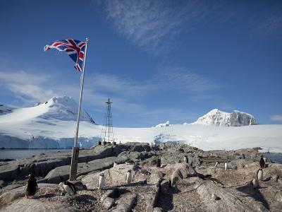 Penguin Colony, English Research Station, Port Lockroy, Antarctic Peninsula