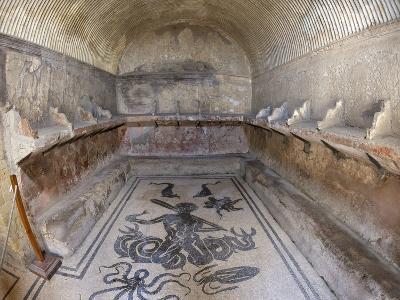 Floor of Tepidarium in Roman Central Baths Mosaic Depicting Triton, Campania, Italy