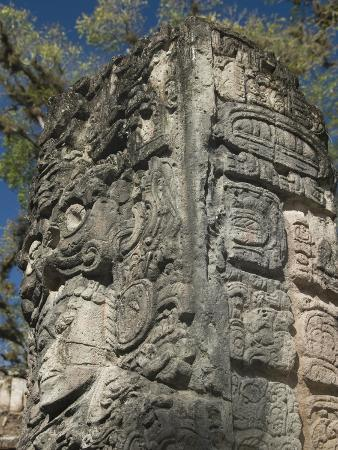 Mayan Glyphs on the Side of Stela, Copan Archaeological Park, UNESCO World Heritage Site, Honduras